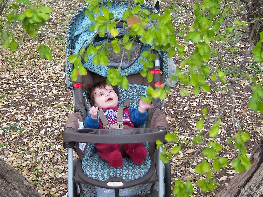 exploring nature by Kristina