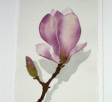 Magnolia 2005 by Kristyna  Silova