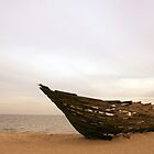 Shipwrecked by Andrew  Maccoll
