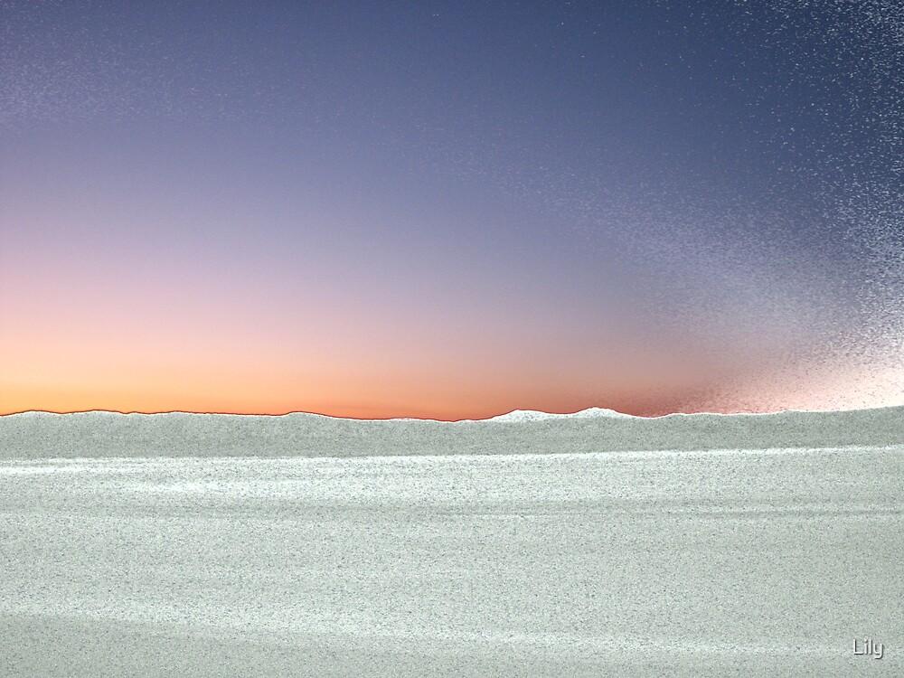 desert by Lily