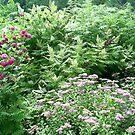 more pretty flowers by oilersfan11