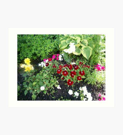 plants of sorted kinds Art Print