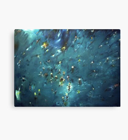 flooded forest (painting) Canvas Print