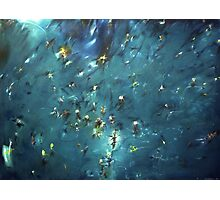 flooded forest (painting) Photographic Print