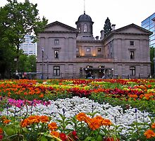 pioneer courthouse in bloom by Bruce  Dickson