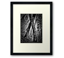 tree hugging Framed Print