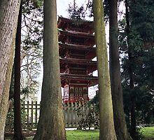 Tea Garden Trees by BstillPhoto