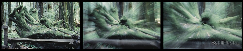 Warp Speed by BstillPhoto