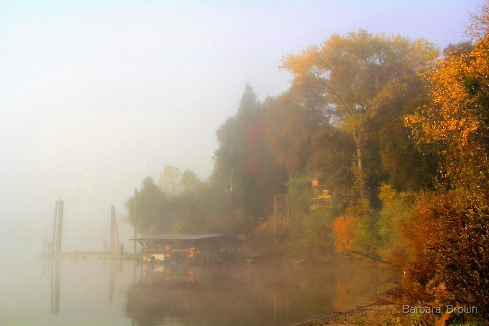 Misty River View by Barbara  Brown