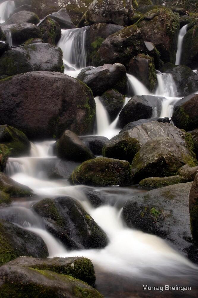 waterfalls by Murray Breingan