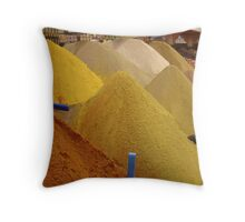 Spices, Spices, & Spices Throw Pillow