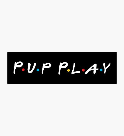 Pup Play Friends Photographic Print
