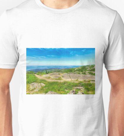 Atop Cadillac Mountain Unisex T-Shirt