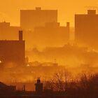 Winter Sunset in New York City  by Alberto  DeJesus