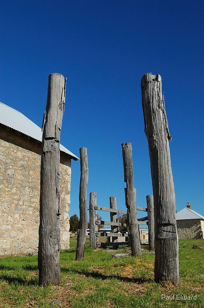 Poles Apart by Paul Elward