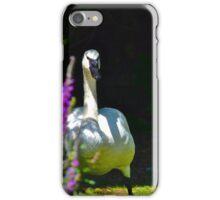 Trumpeter Swan iPhone Case/Skin