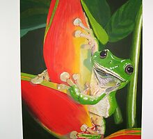 Tree Frog by outbackbob