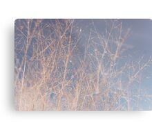 peaceful tree Metal Print
