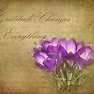 Gratitude Changes Everything by Kathilee