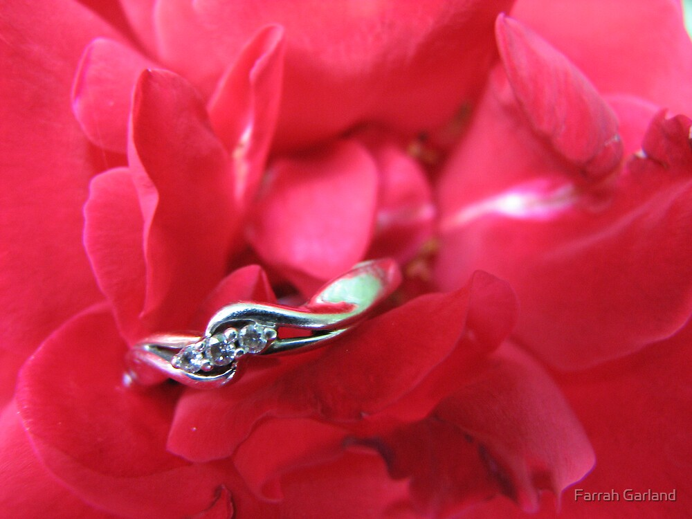 Engagement Ring by Farrah Garland
