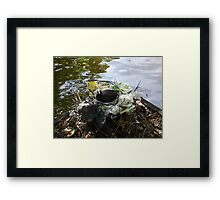 If they can do it why cant we? Framed Print