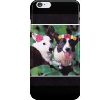 Corgilicious iPhone Case/Skin