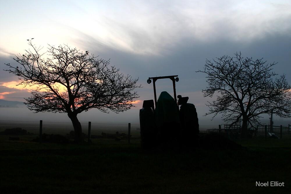 Foggy Morning by Noel Elliot