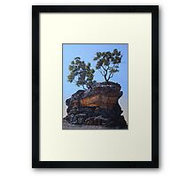 The Sentinel Framed Print