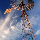 windmill on farm by ellevrg
