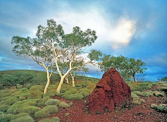 Karijini Landscape #1 by Mark Boyle