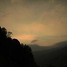 Through the Fog by Corri Gryting Gutzman