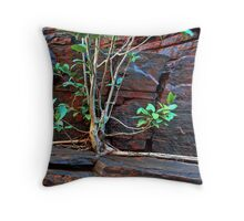 Fig Detail, Joffre Gorge, Karijini NP Throw Pillow