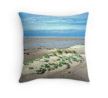Beachscape #1, Stokes Inlet NP Throw Pillow