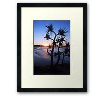 Cylinder Beach, North Stradbroke Island Framed Print