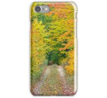 Autumn Two Track iPhone Case/Skin