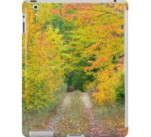 Autumn Two Track iPad Case/Skin
