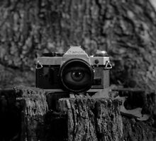 Behind the Lens by Joe Lowrey