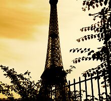 Eiffel Tower by darkhorseaustralia