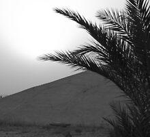 Desert Bunker by James Harrelson