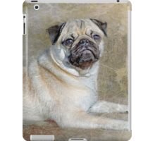 Pug Pose iPad Case/Skin