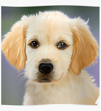Golden Retriever Puppy Painting Poster