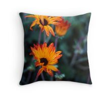 STH AFRICAN DAISIES 3 Throw Pillow