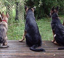 3 Amigos by delacruzgs