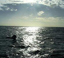 whale fin  by Susanne Schmitz