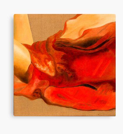 drapé rouge Canvas Print