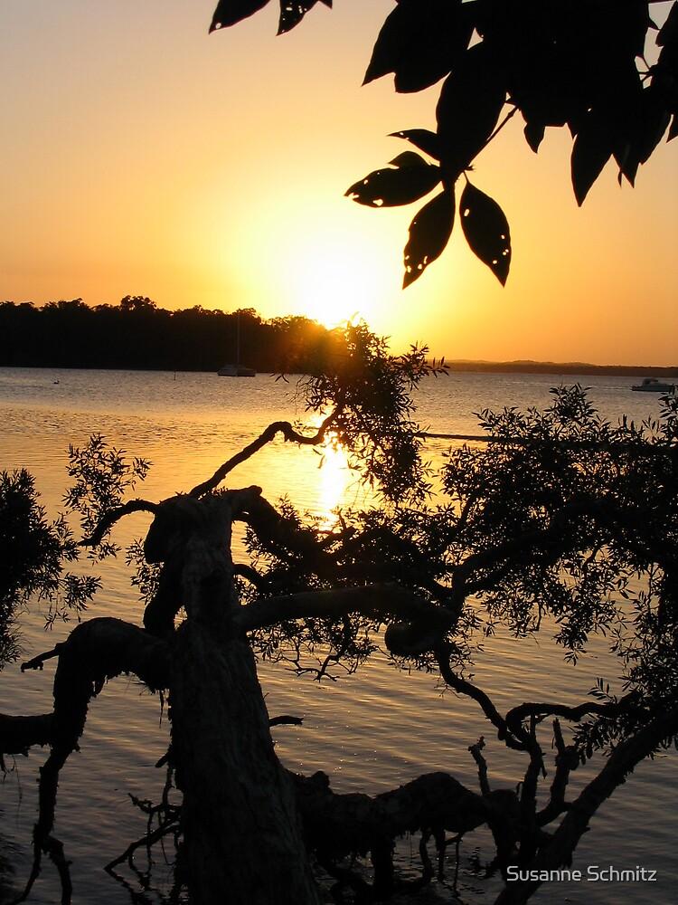 sunset - QLD - Australia by Susanne Schmitz