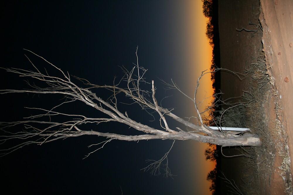 Sunset, Mt Dare by Bronwyn  Murphy