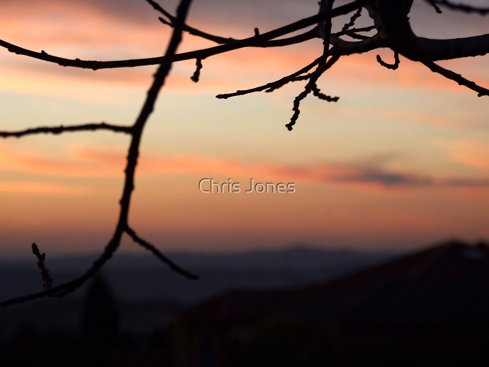 Silhouette Sunset by Chris Jones