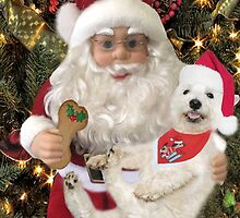 ♥ ˚ ˚✰˚LOOK AT ME ON SANTA'S KNEE I'M HAPPY HE'S GOT A BISCUIT FOR ME♥ ˚ ˚✰˚PICTURE-CARD by ✿✿ Bonita ✿✿ ђєℓℓσ