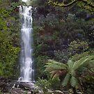 Erskine Falls Reborn by Michael Eyssens